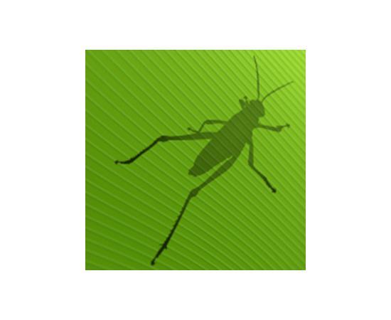 Nyfiken på Grasshopper?