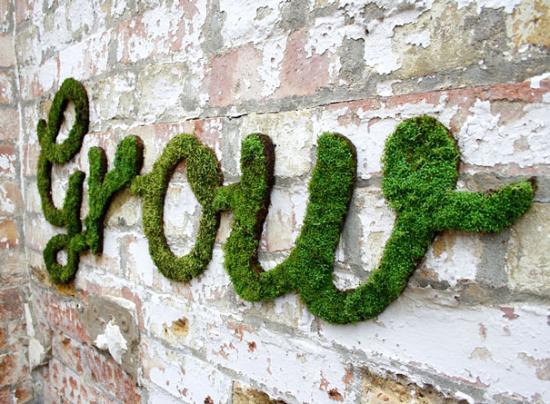 Dekorera utomhusväggar med mossa