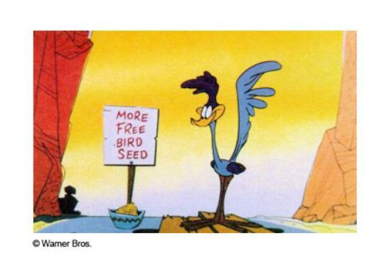 Räkna fåglarna vid fågelbordet!