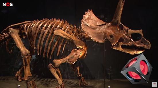 Fullskaliga dinosaurieskelett med 3D-prints